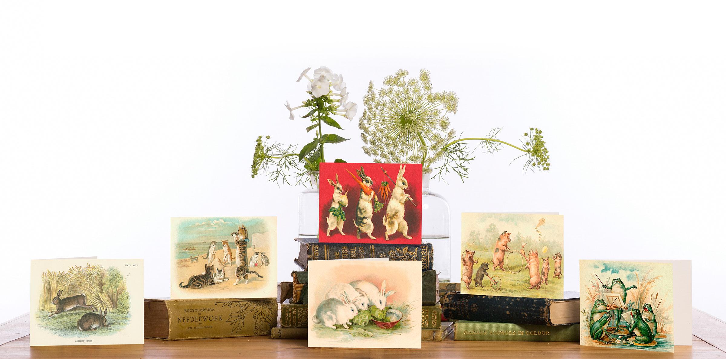 Madame treacle Greeting Card designs 2018