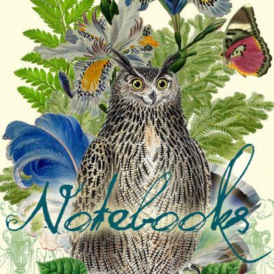 Madame Treacle Notebooks