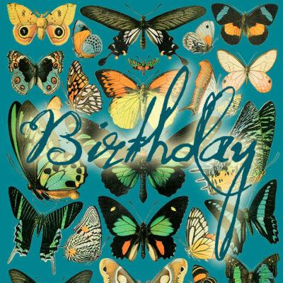 Madame Treacle Birthday Cards