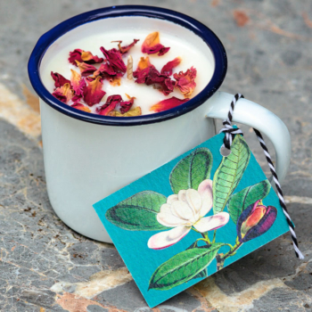 Willow House Rose Geranium Cup Candle