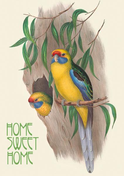 Madame Treacle New Home greeting Card