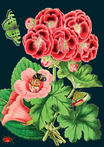 Madame Treacle Botanical greeting Card