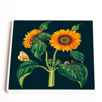 Madame Treacle Midnight Botanical Coasters