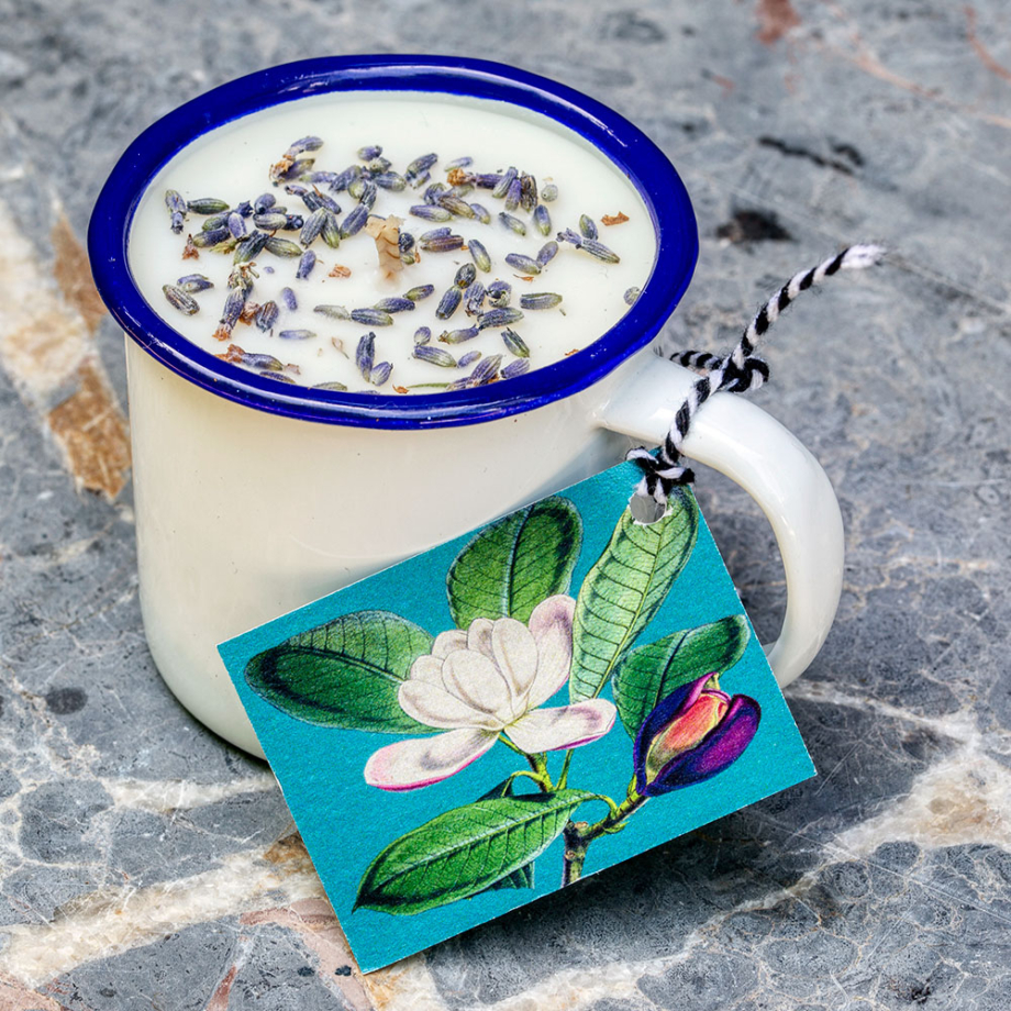 Willow House Lavender Enamel Mug