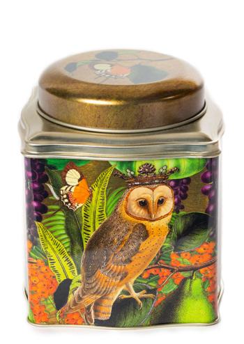 Madame Treacle Owl Tea Caddy