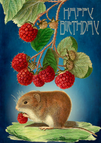 mouse Madame Treacle Birthday Greeting Card