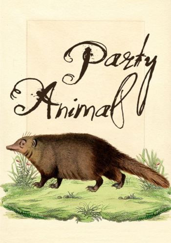 Madame Treacle Party Animal Greeting cards